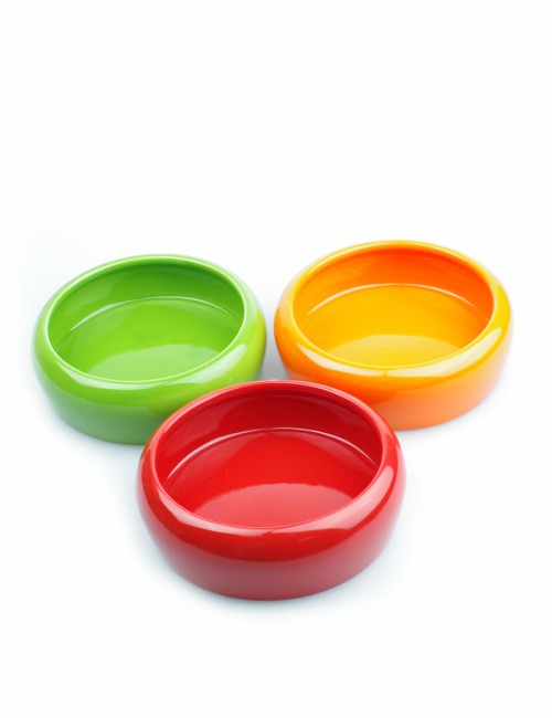 miska ceramiczna dla królika